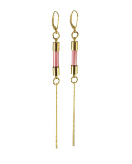 Encased Earrings